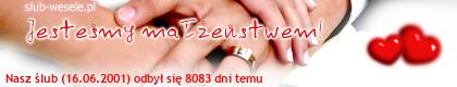 http://s10.suwaczek.com/20010616310413.png
