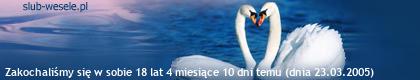 http://s10.suwaczek.com/200503233341.png